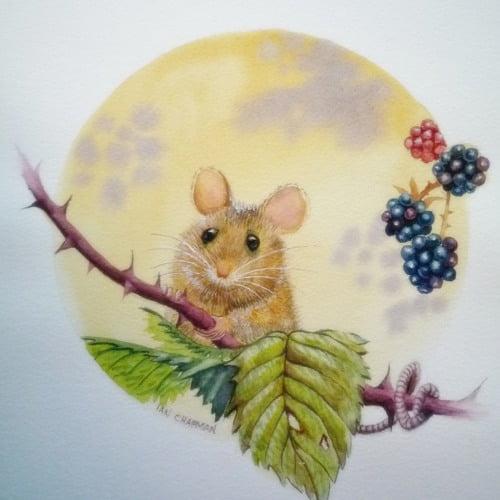 قصة الفأر موشي والسن المهتز (قصة للأطفال عن اهمية الصبر)