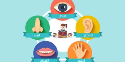 قصة للأطفال عن أهمية وظائف الحواس الخمس عند الإنسان