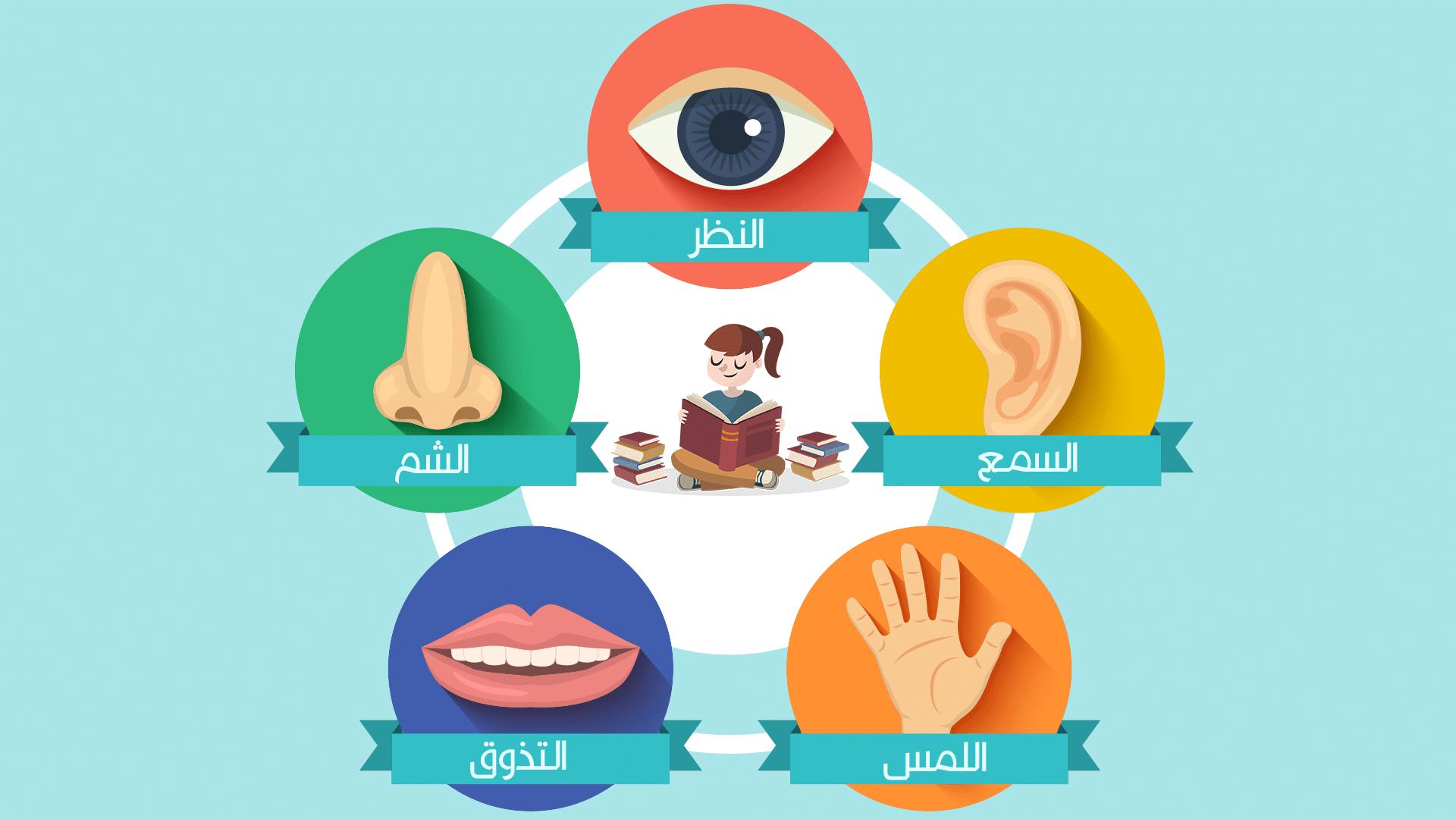 five-senses-for-children