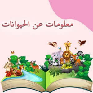 معلومات عن الحيوانات